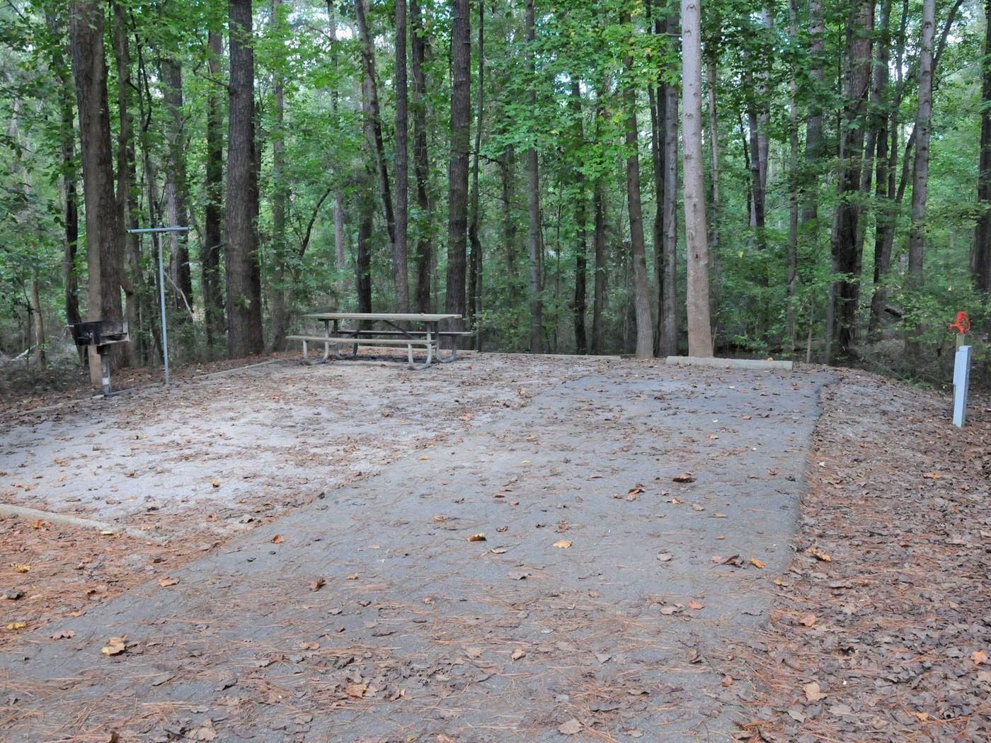 Victoria Campground Site 46