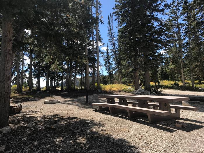 Twelve Mile Flat Campground #4