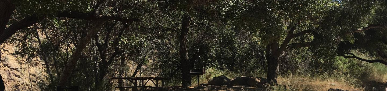 Wheeler Gorge Site 43