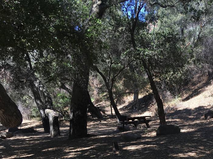 Wheeler Gorge Site 54
