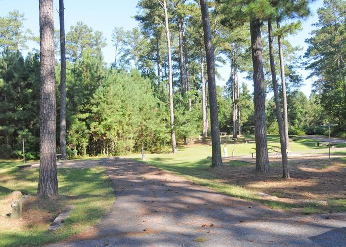 Sweetwater Campground Site 87