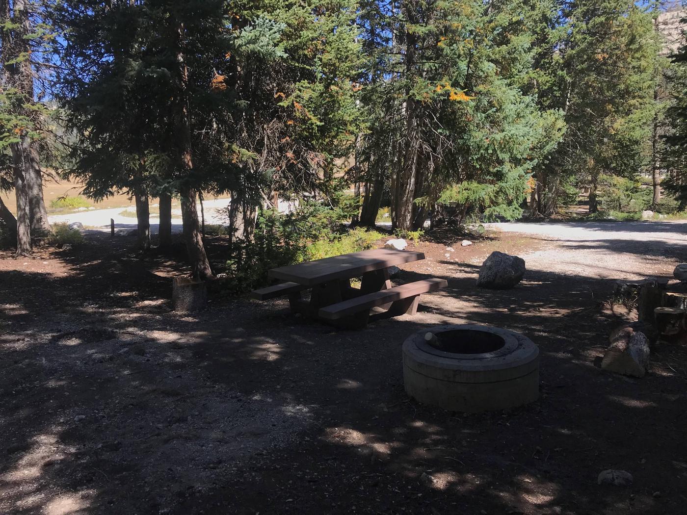 Twelve Mile Flat Campground #14