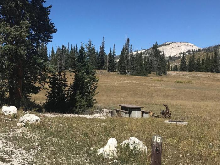 Twelve Mile Flat Campground #16
