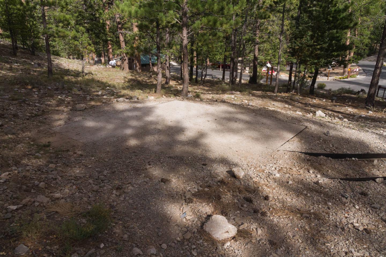 Site 15Site 15 tent pad