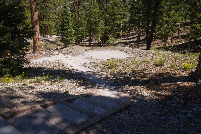 Site 21Site 21 tent pad