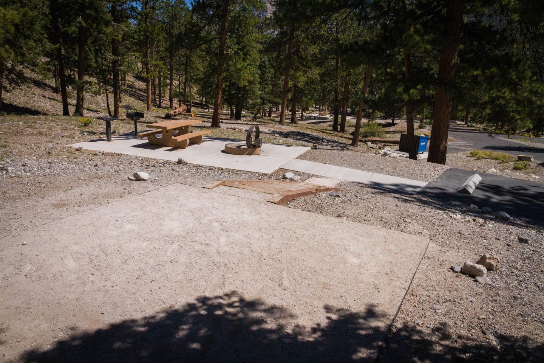Site 22Site 22 tent pad