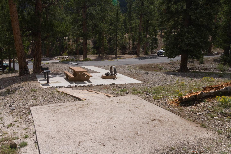 Site 24Site 24 tent pad