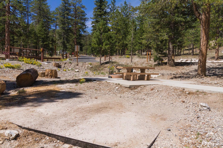 Site 6Site 6 tent pad