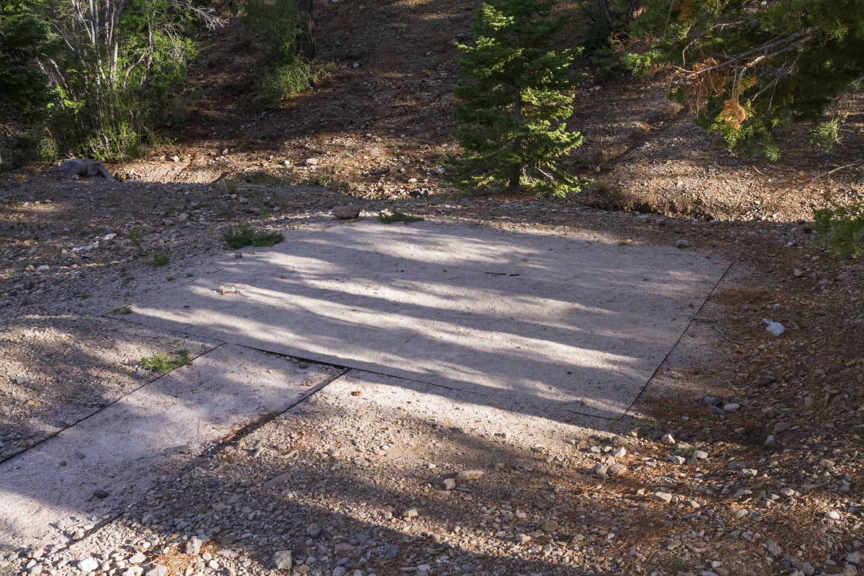 Site 29Site 29 tent pad