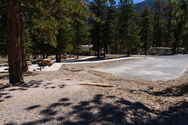 Site 30Site 30 tent pad