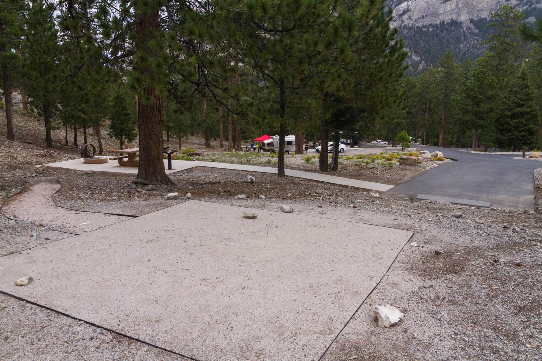 Site 32Site 32 tent pad