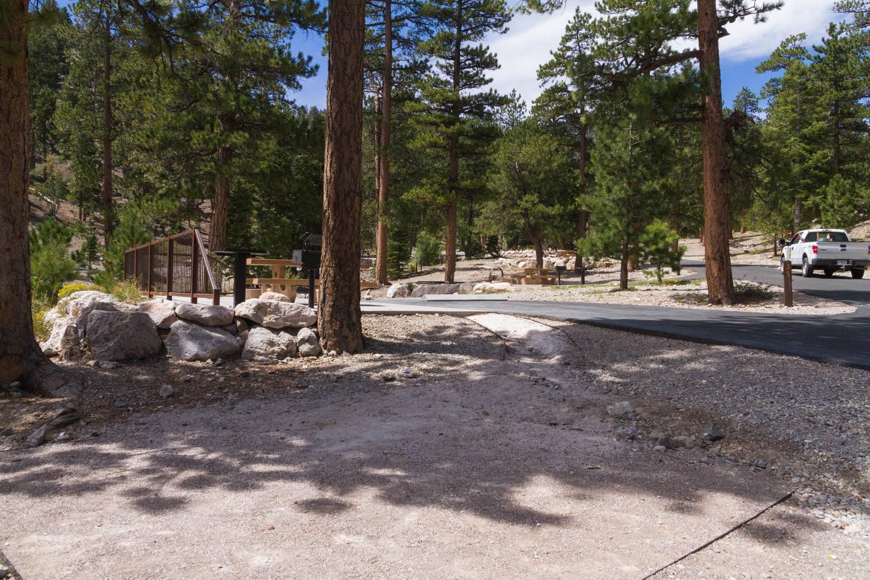 Site 35Site 35 tent pad