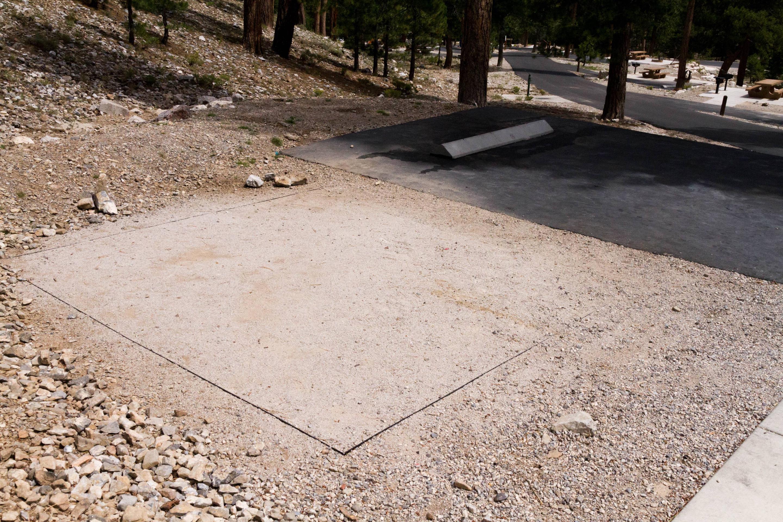 Site 40Site 40 tent pad