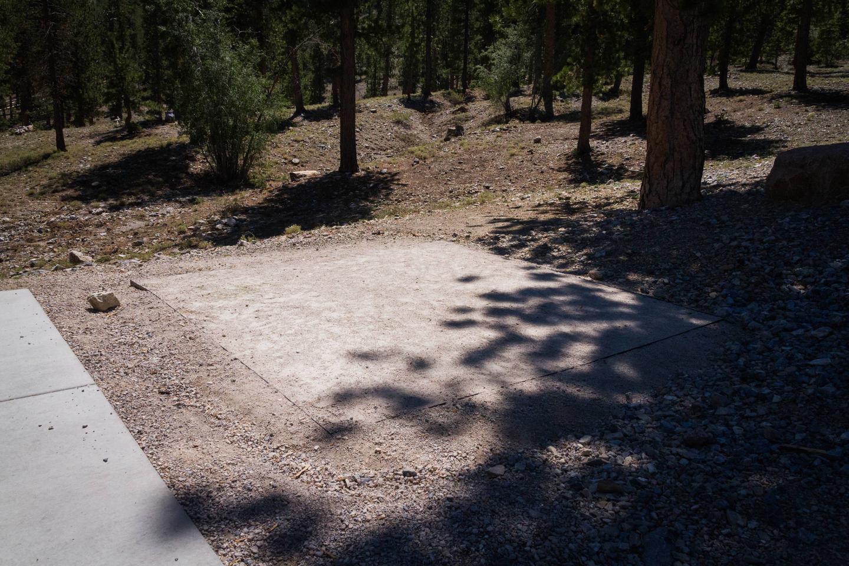 Site 46Site 46 tent pad