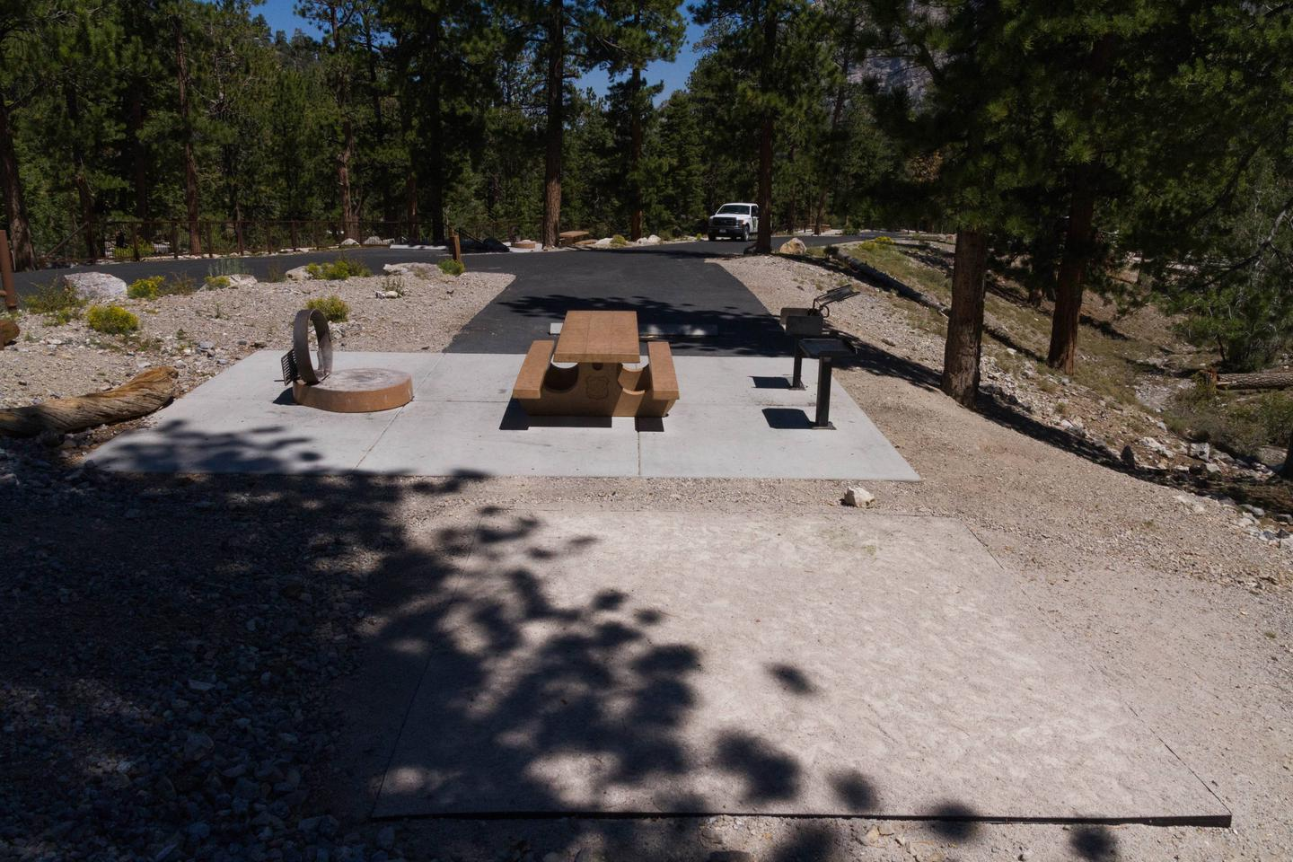 Site 46Site 46 table and fire ring