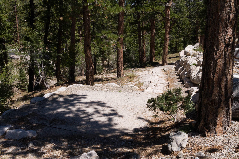Site 47Site 47 tent pad