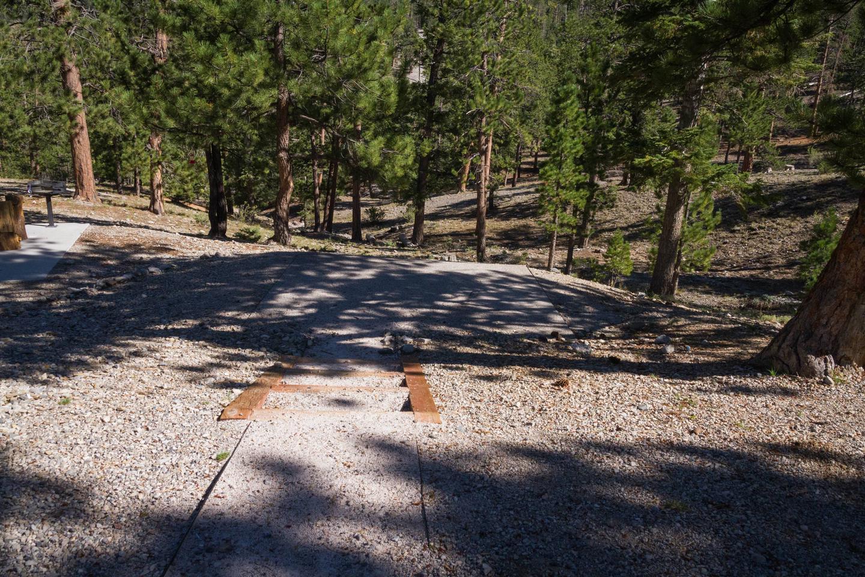 Site 48Site 48 tent pad