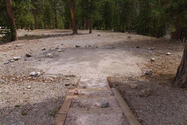 Site 50Site 50 tent pad