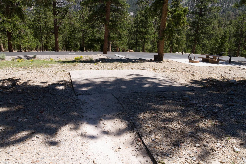 Site 56Site 56 tent pad
