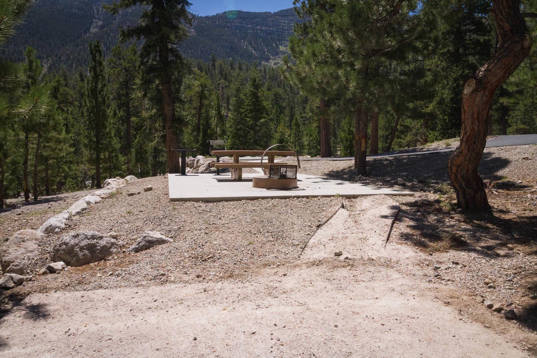 Site 60Site 60 tent pad