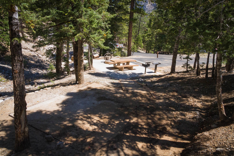 Site 62Site 62 tent pad