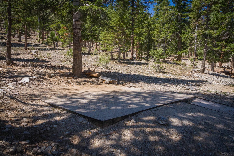 Site 64Site 64 tent pad