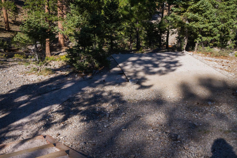 Site 65Site 65 tent pad
