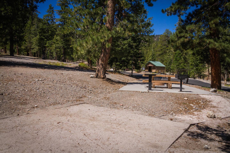 Site 67Site 67 tent pad