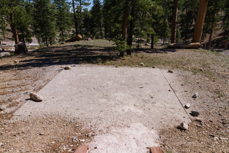 Site 71Site 71 tent pad