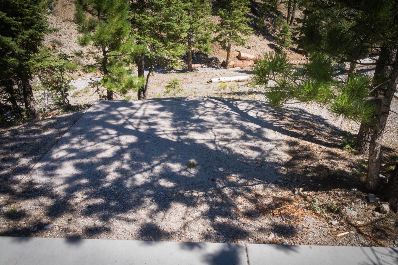 Site 75Site 75 tent pad