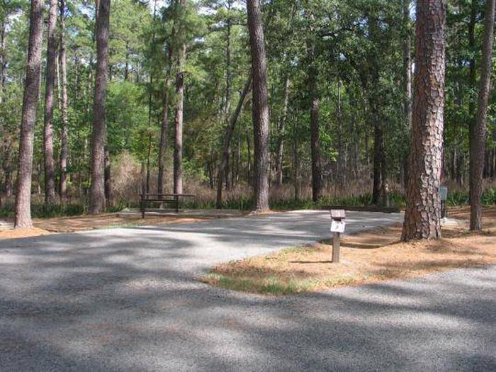 Site 3 Cagle Recreation Area