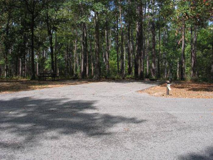 Site 9 Cagle Recreation Area