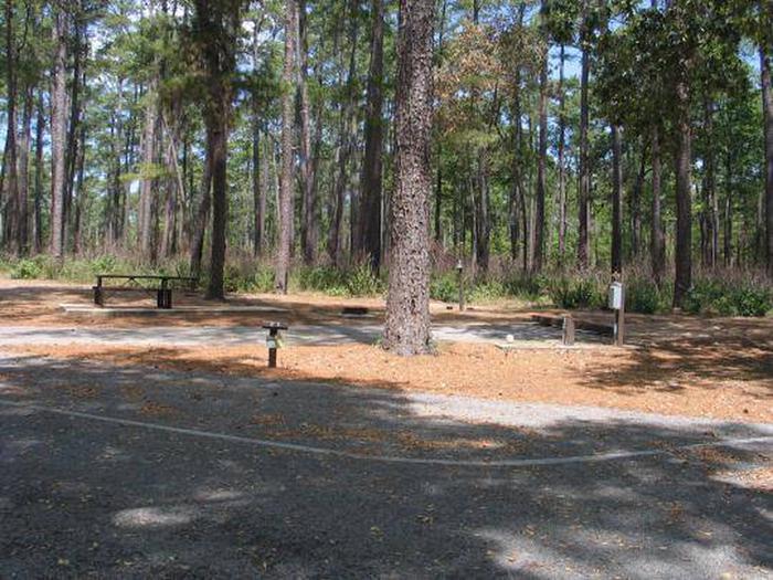 Site 23 Cagle Recreation Area