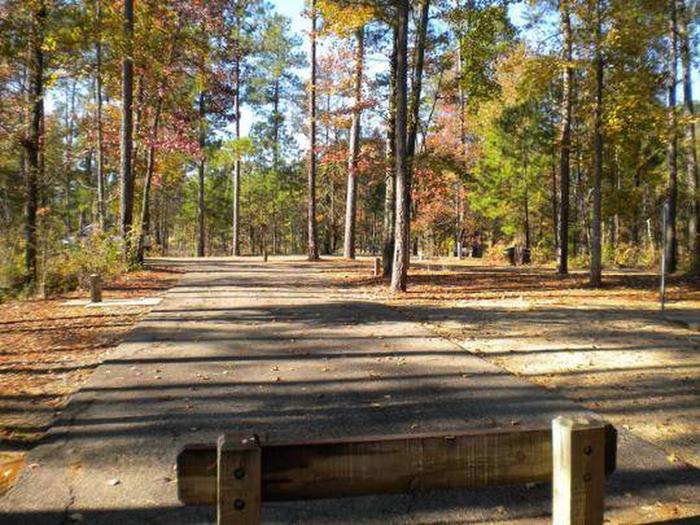Beaver Dam Campground-Site 5