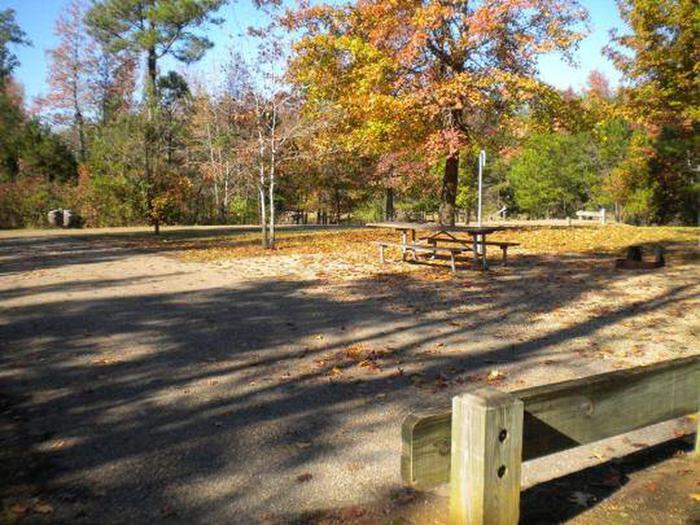 Beaver Dam Campground-Site 10