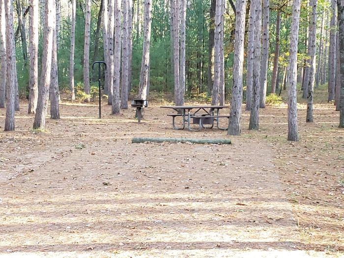 CampgroundSite 8