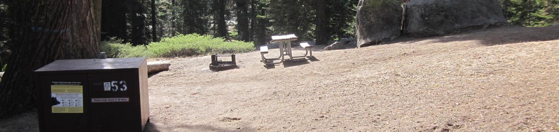 Site 53, Partial Shade, Near Creek