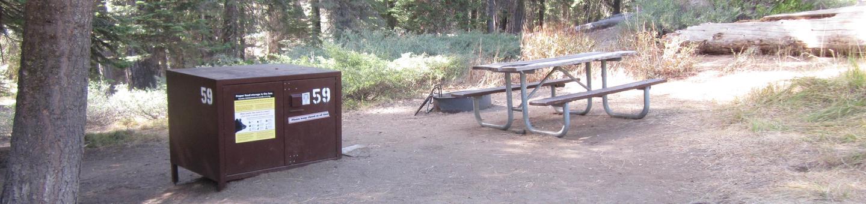 Site 59, Partial Shade, Near Creek