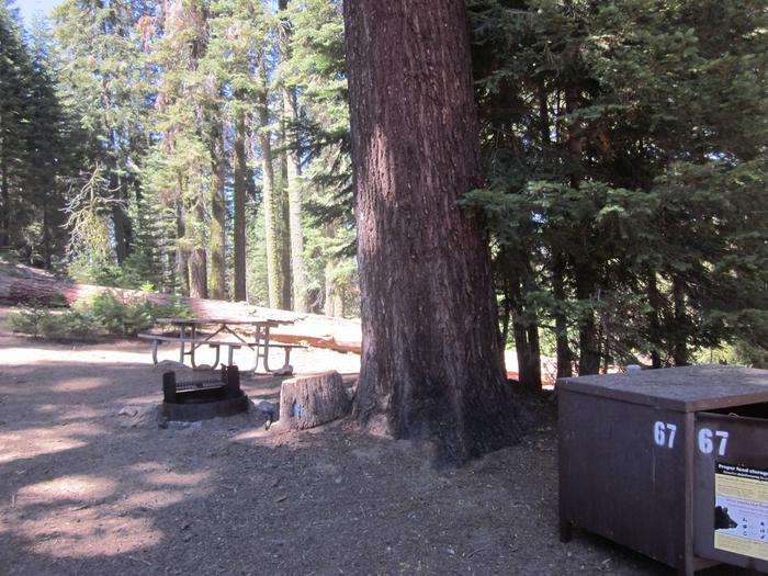 Site 67, Partial Shade, Near Restrooms