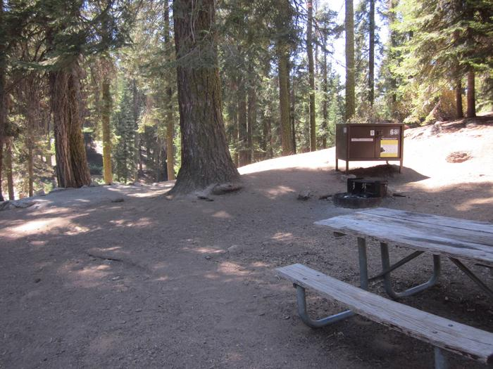 Site 68, Partial Shade, Near Restrooms