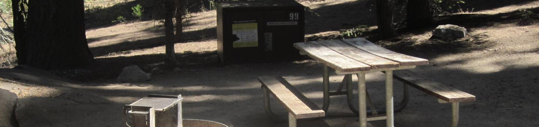 Site 99, no generator loop, partial shade