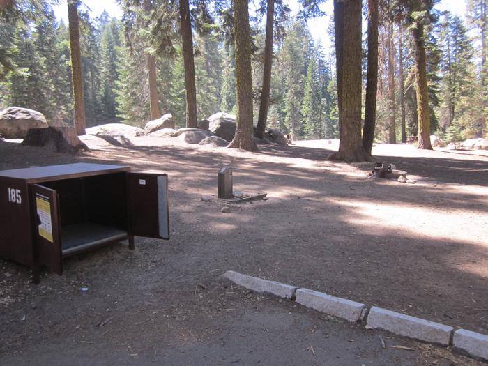Site 185, partial shade Site 185, partial shade