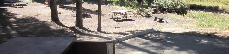 Site 205, shady, near creek and meadow