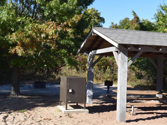 Campsite E18 incorporating a food storage locker, grill, fire ring, and a shelter