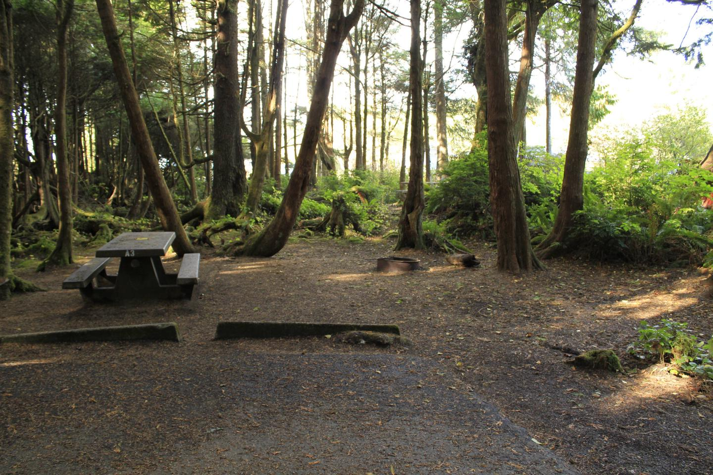 Picture of campsite A3 with picnic tableCampsite A3