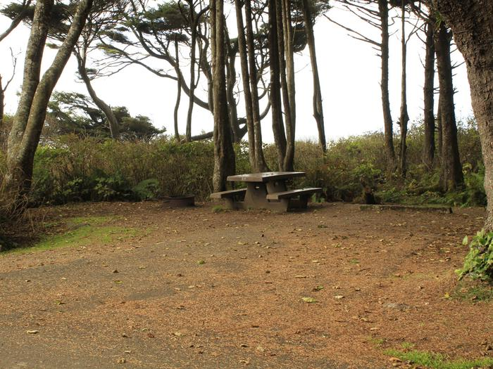 Picture of Campsite with picnic table and fire pitCampsite A11