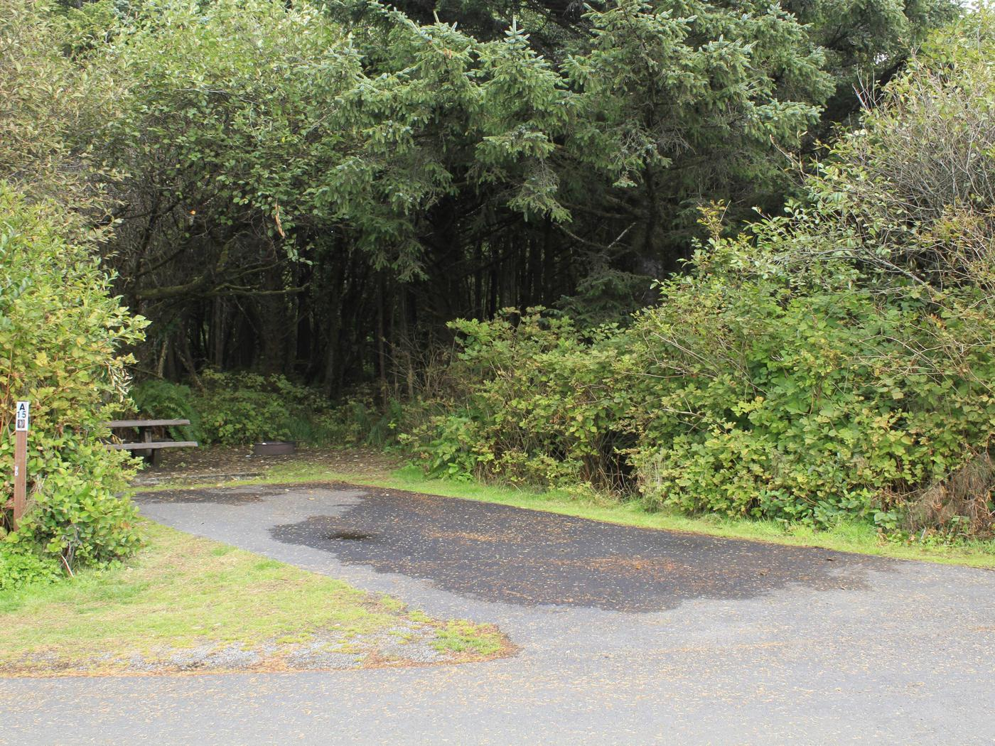 Picture of campsite with picnic tableCampsite A15