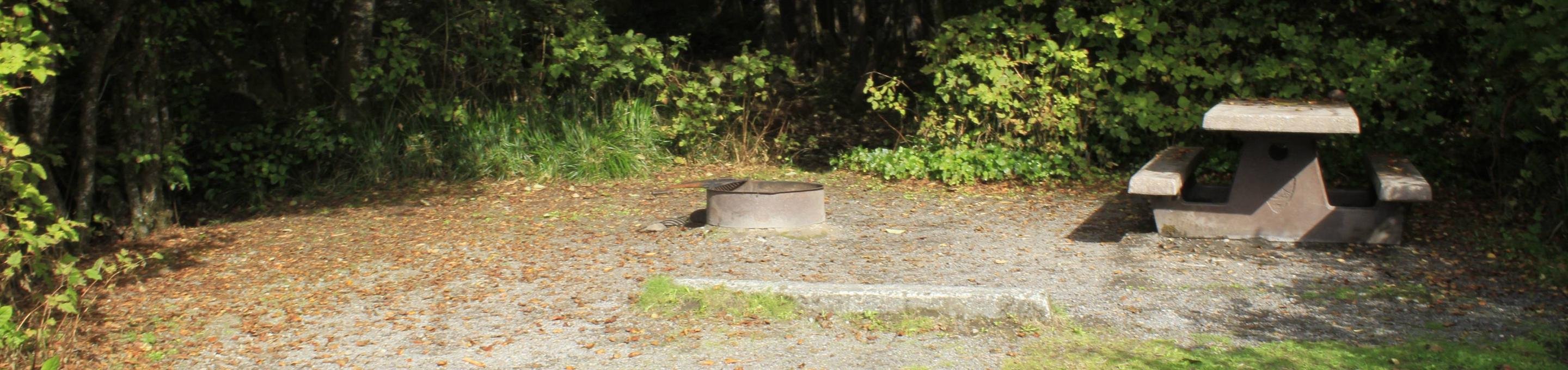 Picture of picnic table and fire pitCampsite A17