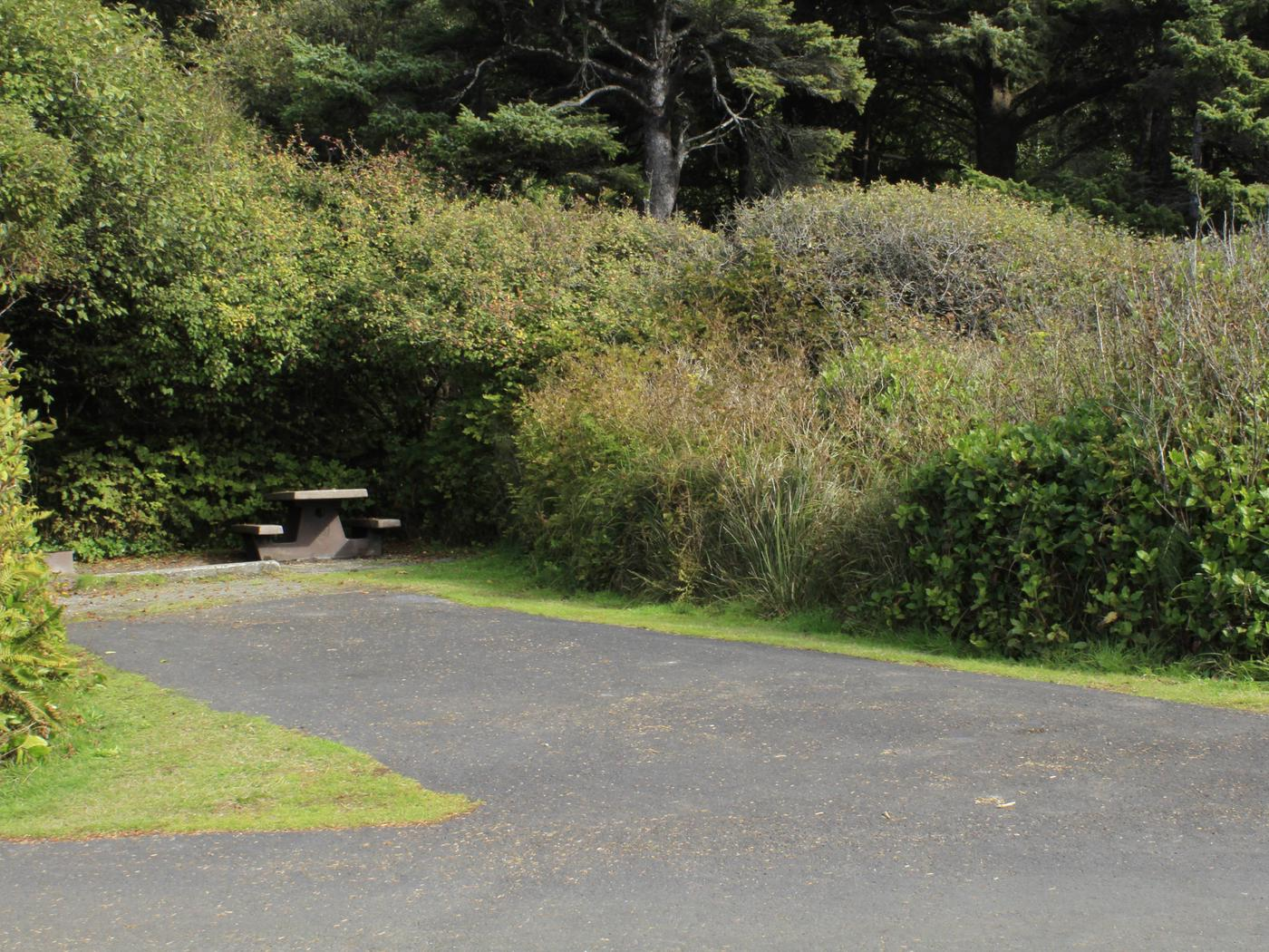 Picture of campsite with picnic tableCampsite A17