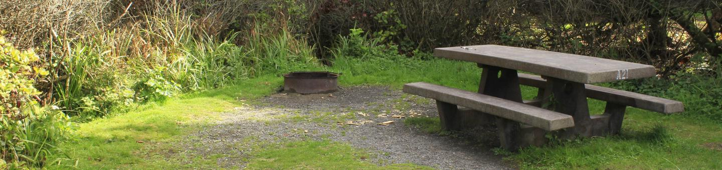 Picture of campsite with picnic table and fire pitCampsite A21